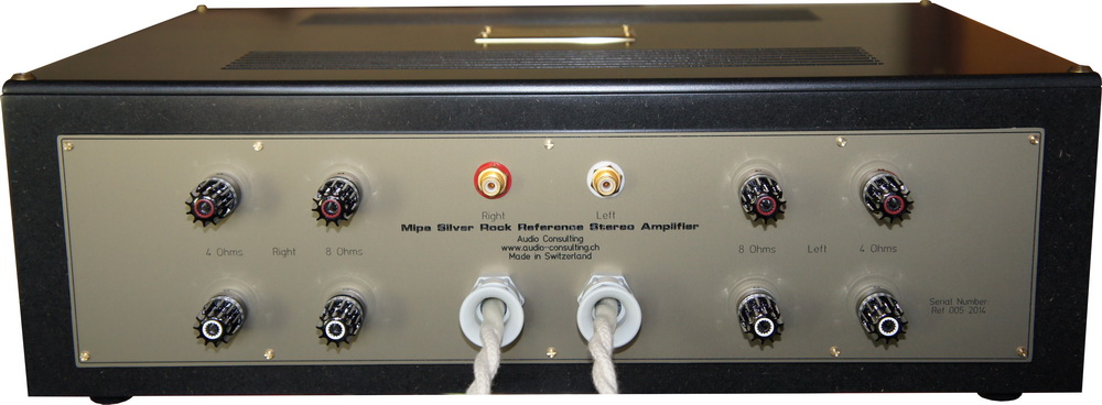 MIPA Amplifier backsite